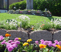 0821120545fishV10close2_verdura_garden_beds_opt
